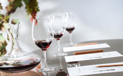 Stimulez tous vos sens lors d'une dégustation de vin