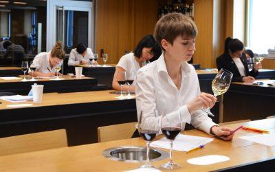De nombreuses opportunités dans les métiers du vin