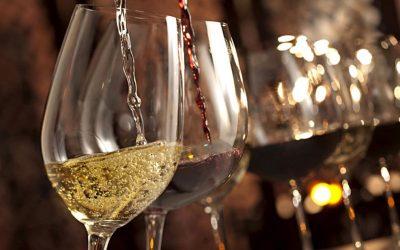 Les différentes formations existantes autour des métiers du vin