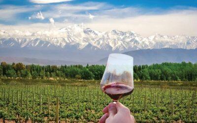 Vin argentin: tout savoir sur les vins argentins!