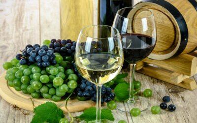 Conservation vin blanc: les bons conseils pour ne pas perdre vos bouteilles de vin blanc